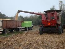 Extrayendo la cosecha del monocultivo, en vías a la regeneración